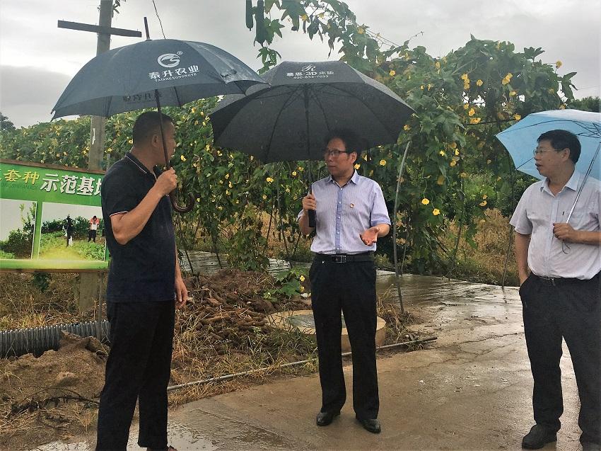 抓典型 找问题 想办法--生态总站开展助力长江经济带农业面源污染治理专题调研